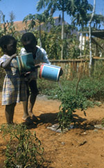 Children watering plants with tin cans